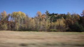 Guidando lungo la strada principale in autunno stock footage