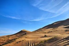 Guidando nel deserto Fotografie Stock Libere da Diritti