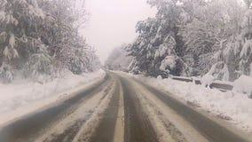 Guidando nella neve