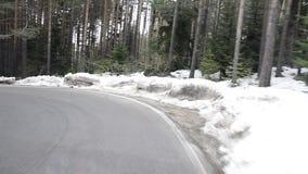 Guidando su una strada della curva nella foresta archivi video