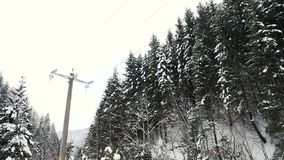 Guidando sulla strada accanto ai pini in montagne di inverno archivi video