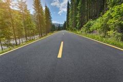 Guidando sulla strada asfaltata alpina attraverso la foresta Immagini Stock