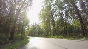 Guidando tramite il sentiero forestale di autunno video d archivio