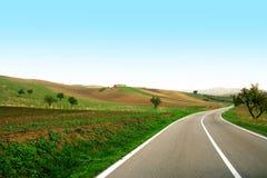 Guidando in una strada verde Immagini Stock Libere da Diritti