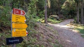 Guide d'escursione gialle sul percorso da Grachen a Gasenried fotografie stock