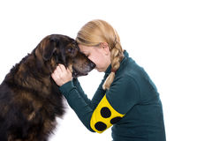 Guide dog Royalty Free Stock Photo