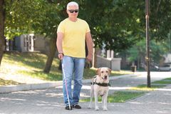 Guide dog helping blind man. In the city royalty free stock photos