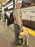 Guide Dog and Man in Subway royalty free stock images