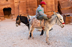Guide with donkeys in Petra, Jordan Royalty Free Stock Photography