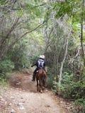 GUIDE OF HORSEBACK RIDING, TRINIDAD, CUBA Royalty Free Stock Photo