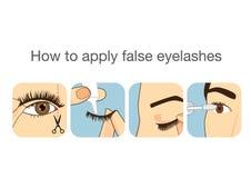 Guide step to applying false eyelash Stock Photos