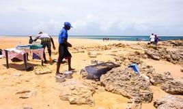 Guide turistiche locali che grigliano frutti di mare con la vista di oceano sabbiosa nel Mozambico Immagine Stock Libera da Diritti