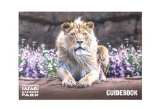 Guidebook for West Midland Safari and Leisure Park, Bewdley, Hereford and Worcester, England. BEWDLEY, UK - FEBRUARY 21, 2019: Guidebook for West Midland Safari stock image