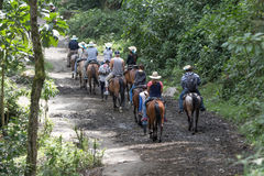 Guided sightseeing on horseback in Colombia Stock Images