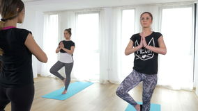 Guided yoga sequence with beautiful women doing tree asana stock video footage