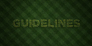 GUIDELINES - fresh Grass letters with flowers and dandelions - 3D rendered royalty free stock image. Can be used for online banner ads and direct mailers Stock Photography