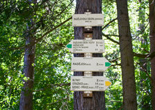 Guidepost. On the tree, in the forest royalty free stock photo