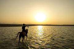 Guidi fuori nel tramonto nell'egitto Immagine Stock