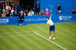 Guido Pella Argentinian Tennis player. On grass Stock Photo
