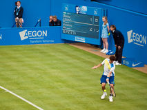 Guido Pella Argentinian Tennis player. On grass Royalty Free Stock Photography
