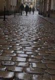 Guijarro mojado viejo en la lluvia Fotos de archivo