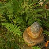 Guijarros apilados con las hojas del helecho Imagen de archivo