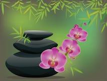 Guijarros con la orquídea ilustración del vector