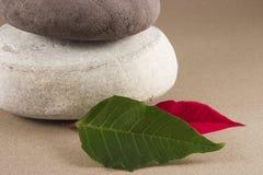 Guijarros con las hojas Fotografía de archivo libre de regalías