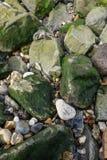 Guijarros de las piedras de las rocas imagen de archivo