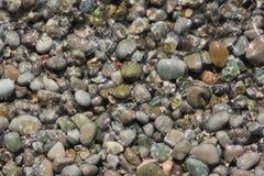 Guijarros del mar en agua Foto de archivo libre de regalías
