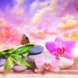 Guijarros del zen con las hojas del bambú y las flores de la orquídea en la tabla Foto de archivo