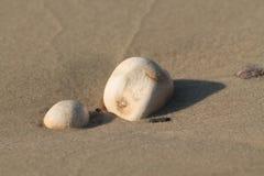 Guijarros en la orilla de mar del mar del galille Fotos de archivo libres de regalías