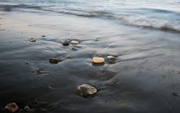 Guijarros en la playa y la agua de mar que fluye Foto de archivo libre de regalías