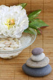 Guijarros, flor y tazón de fuente con agua y el pebb blanco Imagen de archivo libre de regalías