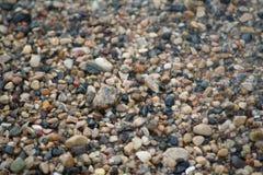 Guijarros a lo largo de la línea de la playa Fotos de archivo libres de regalías