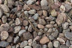 Guijarros rocosos con el palillo Fotografía de archivo libre de regalías