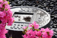 Guijarros rosados del negro de la azalea imagen de archivo libre de regalías