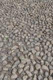 guijarros Superficie del pavimento de la piedra del adoqu fotografía de archivo