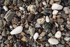 Guijarros y piedras Imagenes de archivo