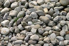 Guijarros y piedras Fotos de archivo libres de regalías