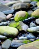 Guijarros y rockpools de la playa foto de archivo libre de regalías