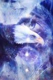 Águila de la pintura con el ojo de la mujer en fondo y Yin Yang Symbol abstractos en espacio con las estrellas Alas a volar, libe Imagen de archivo