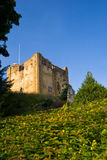 guildford Англии замока Стоковая Фотография
