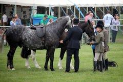 Guildford Anglia, Maj, - 28 2018: Equestrian jeździeccy konkurenci Zdjęcie Stock