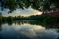 Guildford Lake during Summer Evening Stock Photo