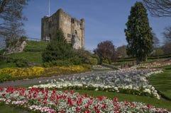 Guildford slottuppehälle & jordning, Surrey England arkivfoto