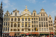 Guildhalls in the Grand Place Stock Images