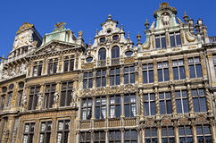 Guildhalls in the Grand Place in Brussels. Stock Photos
