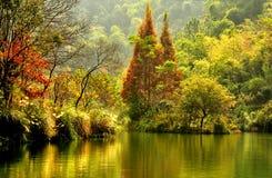 Guilin-Landschaft 010 Stockbild