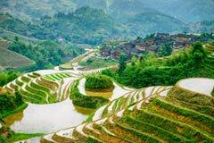 Guilin Rice Terraces. Yaoshan Mountain, Guilin, China hillside rice terraces landscape Royalty Free Stock Photos